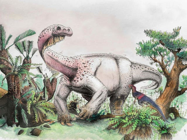 """The Ledumahadi Mafube roamed around 200 million years ago in what is now South Africa. Recently discovered by a team of international scientists, it was the largest land animal of its time, weighing 12 tons and standing at 13 足. In Sesotho, the South African language of the region in which the dinosaur was discovered, its name means """"a giant thunderclap at dawn"""""""