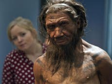 Neanderthal extinction caused by inbreeding and small populations rather than by humans, studie suggereer