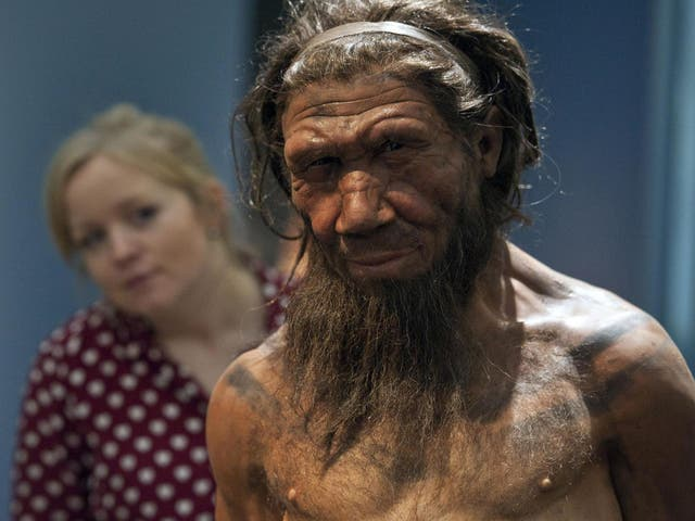 On migrating from Africa around 70,000 anos atrás, humans bumped into the neanderthals of Eurasia. While humans were weak to the diseases of the new lands, breeding with the resident neanderthals made for a better equipped immune system