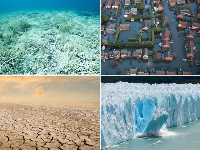 The Intergovernmental Panel on Climate Change has issued a report which projects the impact of a rise in global temperatures of 1.5 degrees Celsius and warns against a higher increase