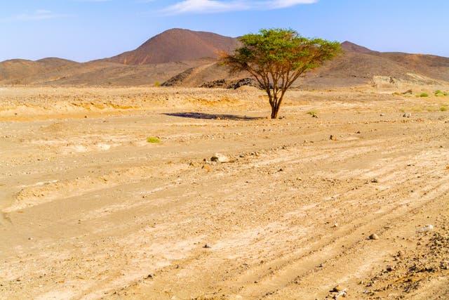 Eastern desert landscape near Wadi Halfa, Soedan