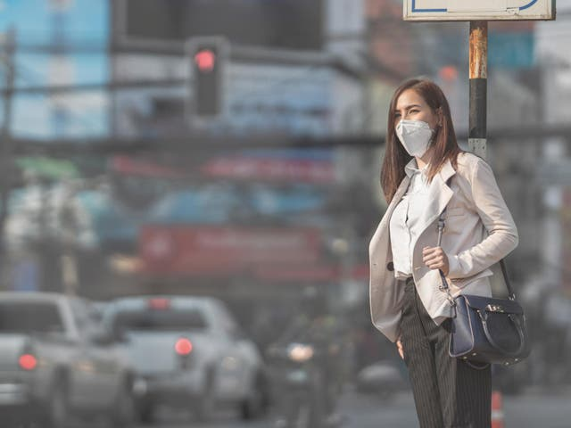 Exposure to air from traffic-clogged streets could leave women with fewer years to have children, a study has found. Italian researchers found women living in the most polluted areas were three times more likely to show signs they were running low on eggs than those who lived in cleaner surroundings, potentially triggering an earlier menopause