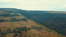 Farmers fight food insecurity in Uganda with climate smart agriculture