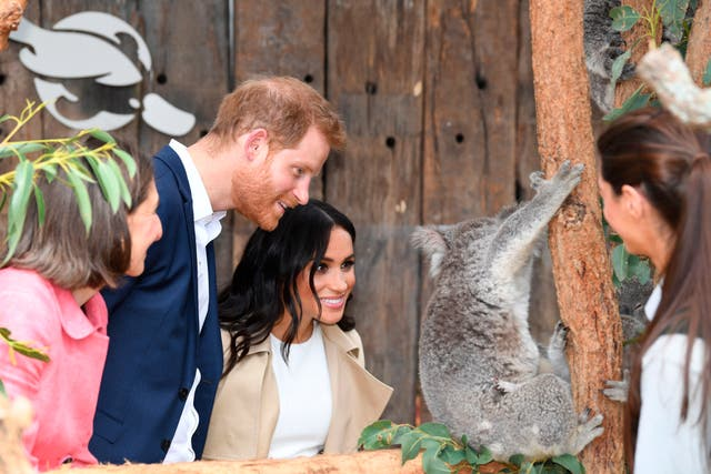 Prince Harry and Meghan meet a koala named Ruby and its koala joey named Meghan after the Duchess of Sussex during a visit to Taronga Zoo in Sydney