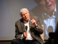 Sir David Attenborough retains 'some hope' world can tackle climate crisis