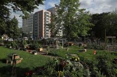 Residents in green neighbourhoods 'less likely to develop heart disease'