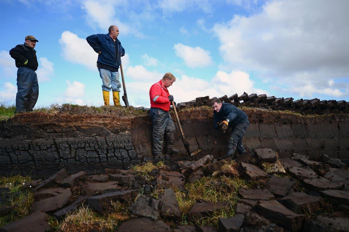 Restoring UK's peatlands now would offer 'largest economic benefits'