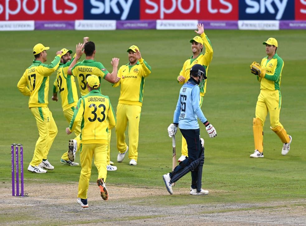 Josh Hazlewood celebrates taking the wicket of Joe Root