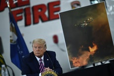 'They live in the forest': Trump makes bizarre claim Austrians live in 'forest cities' while dismissing climate crisis as cause of wildfires