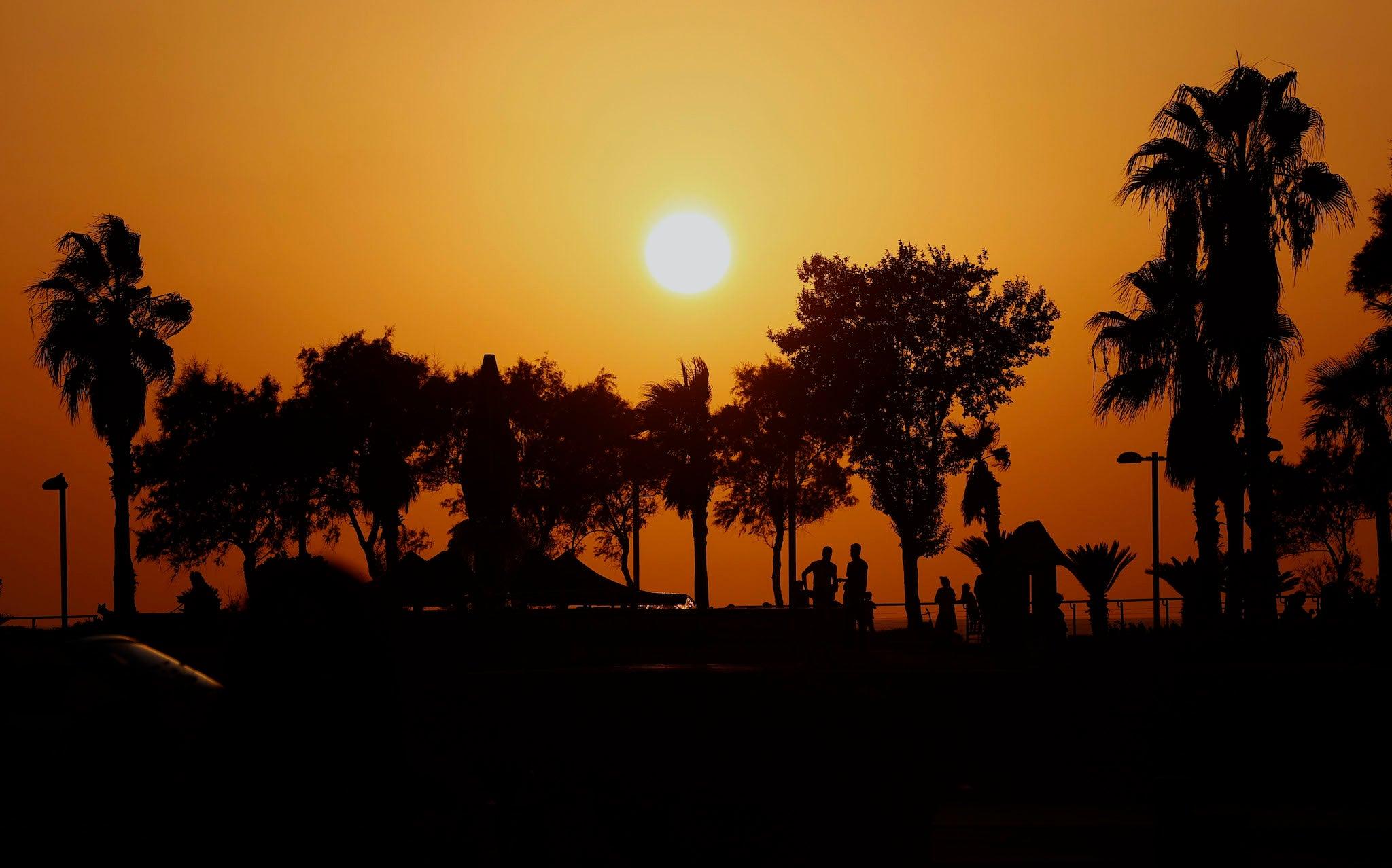 New 'solar cycle' has begun, Nasa says