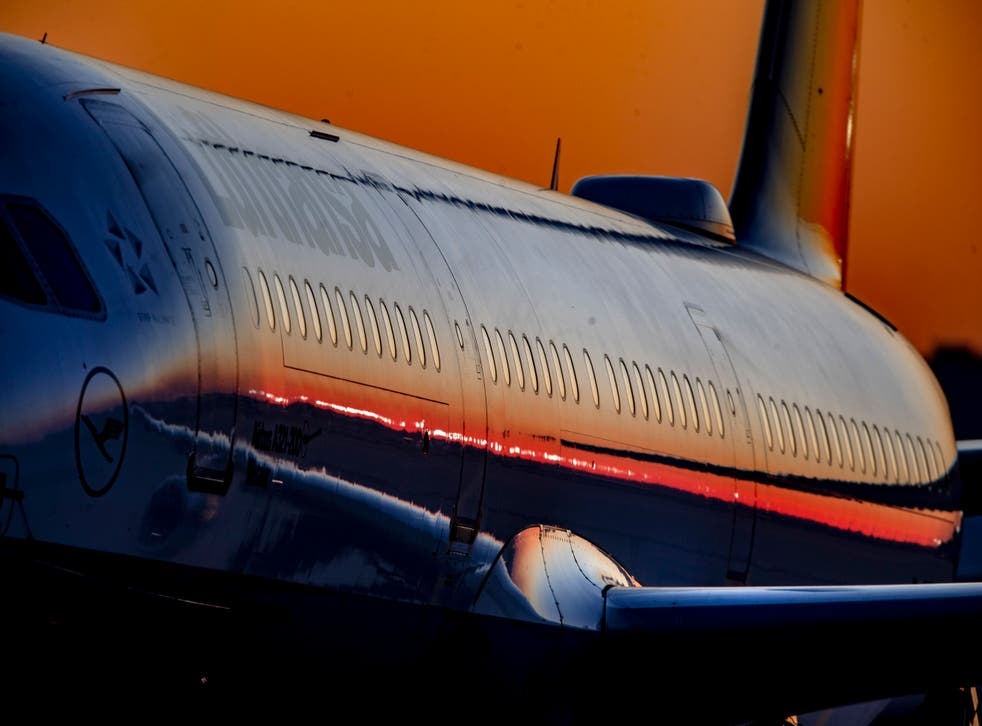 <p>Lufthansa is one of the airlines involved in the scheme</p>