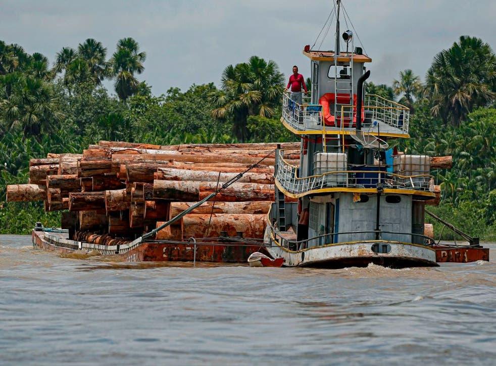 Varios países miembros de la Unión Europea mostraron su preocupación por la deforestación que se puede dar en el Amazonas.
