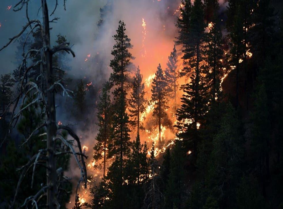 El llamado incendio Bobcat amenaza a una enorme cantidad de viviendas en California.