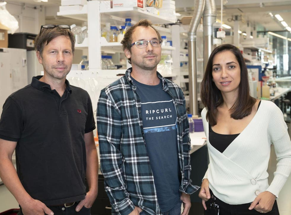 Bjorn Reinius, principal investigator of the study (centre) with co-first authors Ioanna Smyrlaki (right) and Anders Ekman