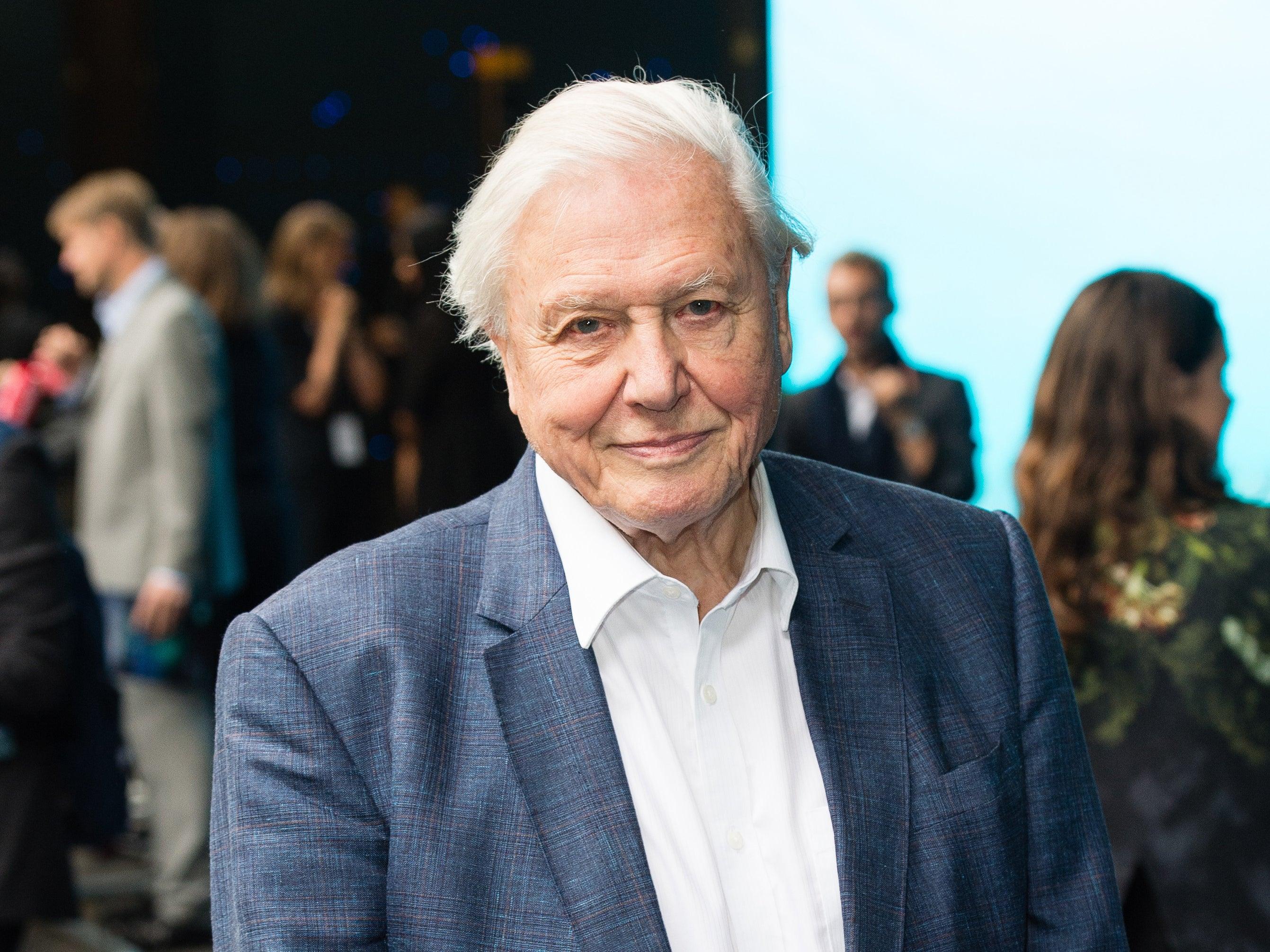 Sir David Attenborough breaks record as fastest Instagram user to reach one million followers
