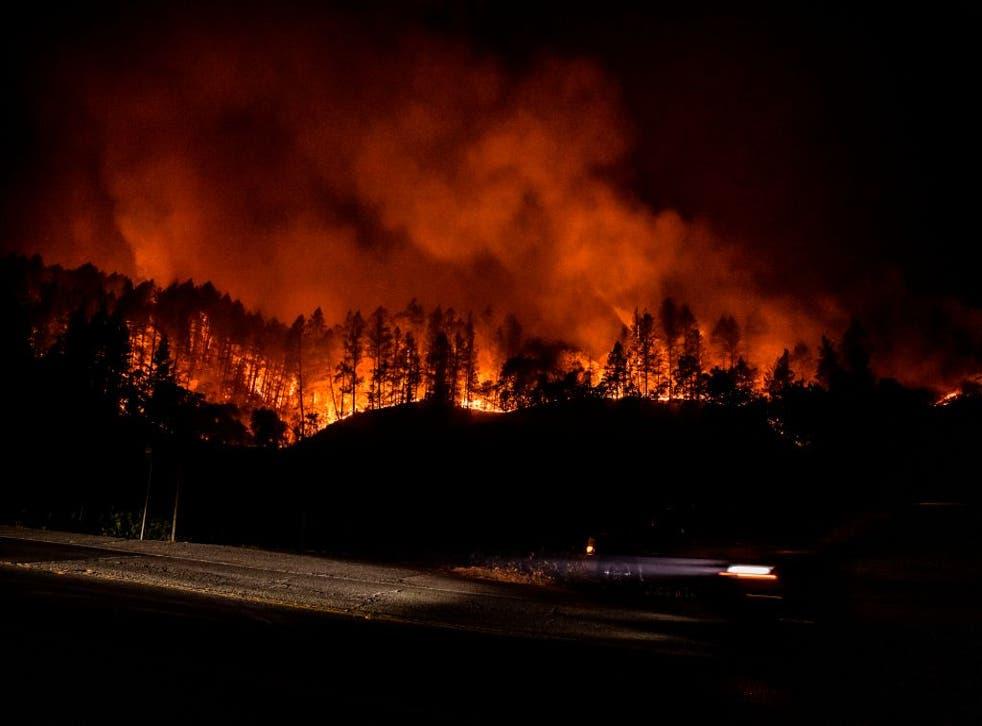 Los bomberos de California están intentando hacerse con el control de varios incendios forestales que arrasan el estado.