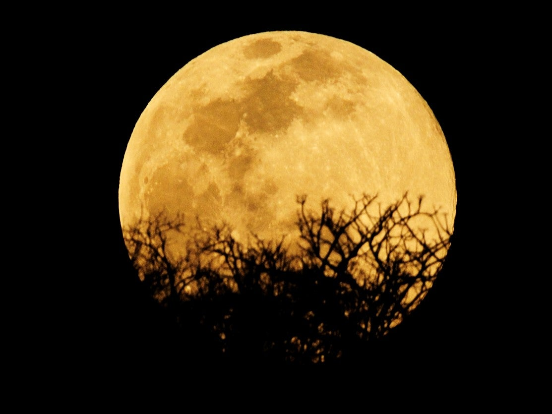How to watch rare full moon tonight as it lines up with 'full Mars'