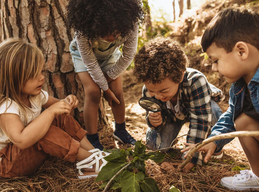 Research indicates more time spent outdoors in natural environments improves children's health, behaviour, and educational attainment, and benefits teachers too