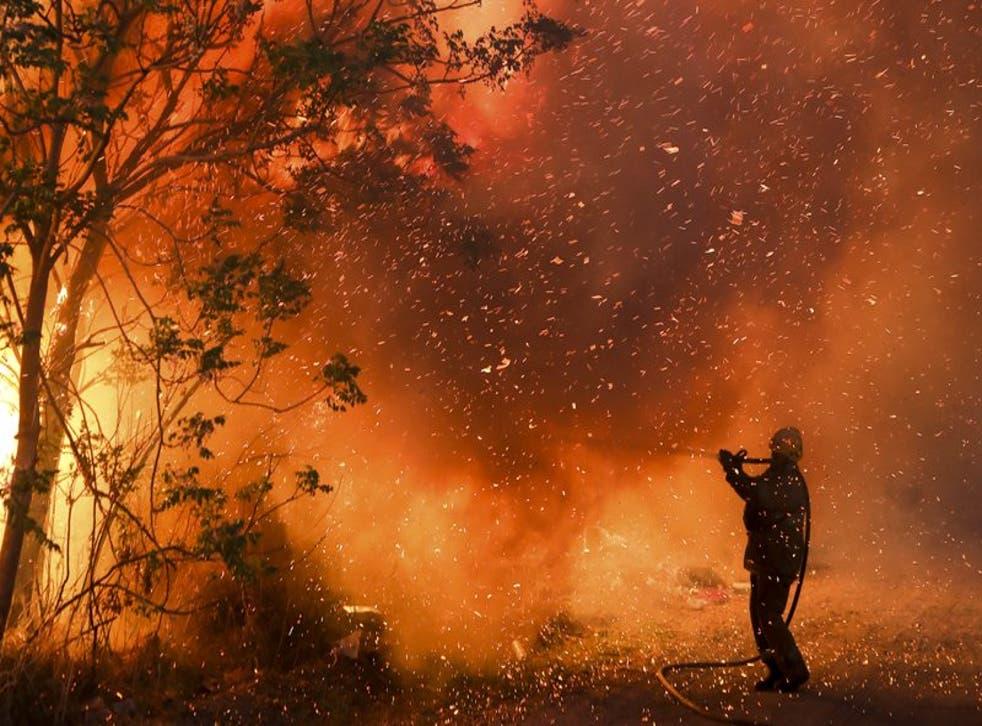 Las condiciones para el desarrollo de incendios forestales continúan siendo extremas debido a la persistente sequía y las altas temperaturas.