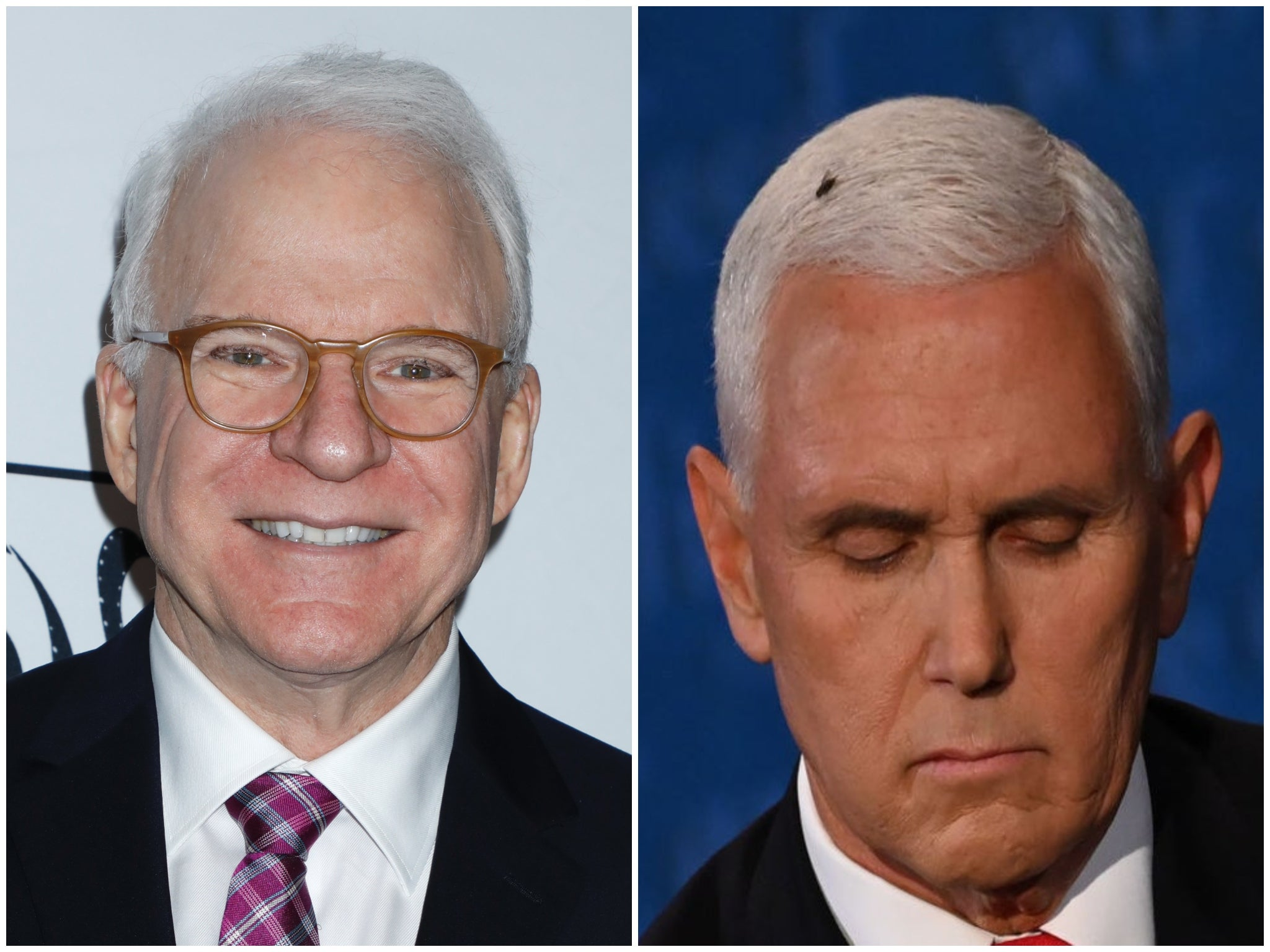 Steve Martin jokes he has a Mike Pence-themed Halloween costume