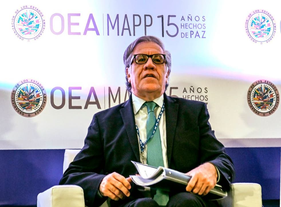 Almagro denunció un fraude electoral en Bolivia en 2019 que no fue comprobado