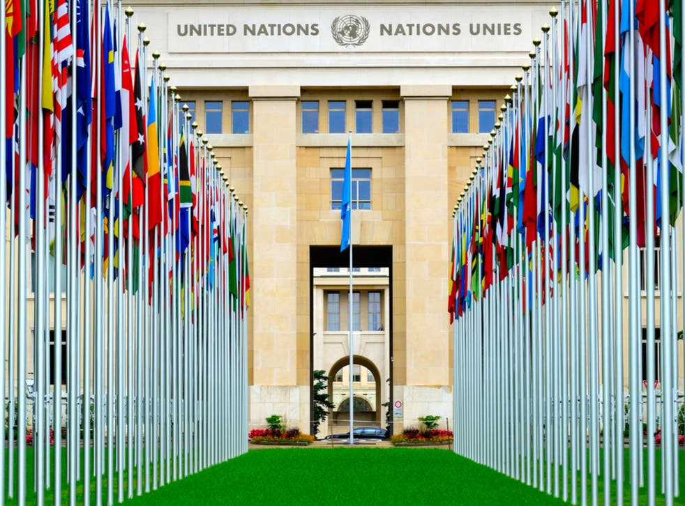 On United Nations Day, we look at the companies building back more sustainably