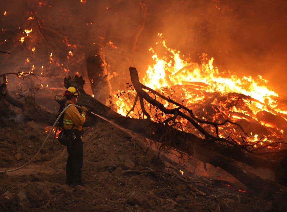 Los vientos  también provocaron un corte de energía en un intento por evitar que los equipos de servicios públicos provoquen nuevas llamas.