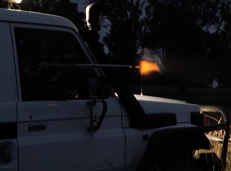 Shots being fired at a kangaroo from a car at night
