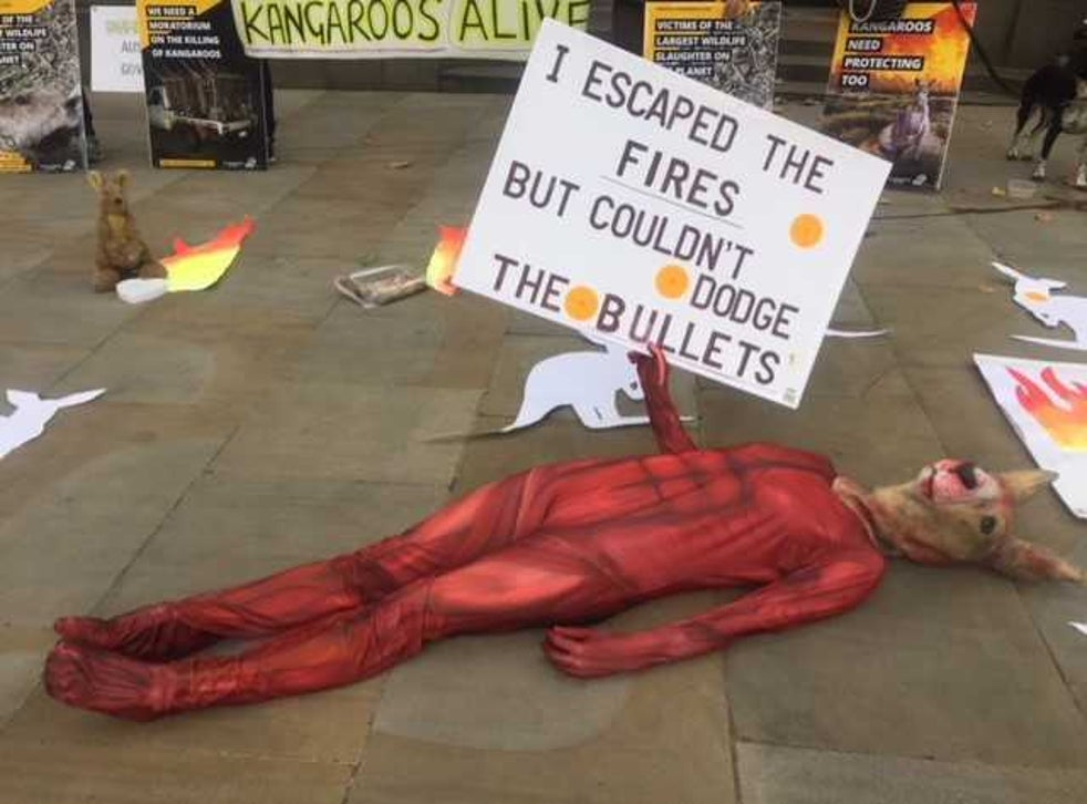 <p>A protest against the culling of kangaroos outside the Australian High Commission</p>