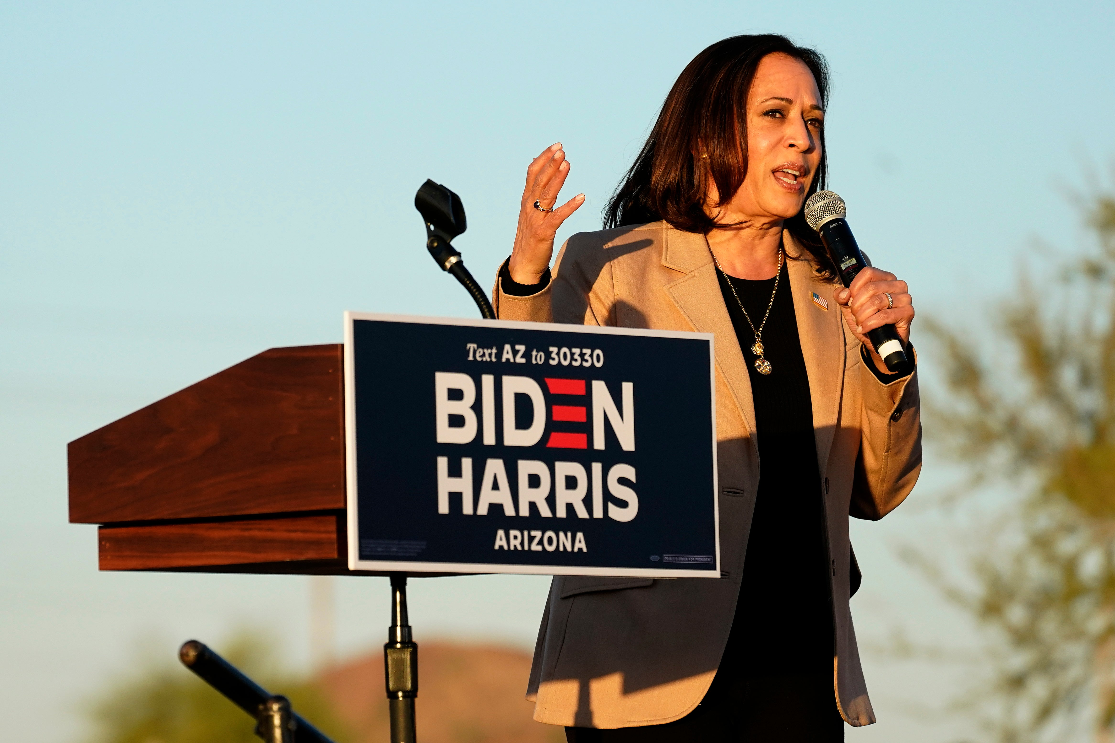 Exclusive: American voters would not approve of a Kamala Harris presidency, poll finds