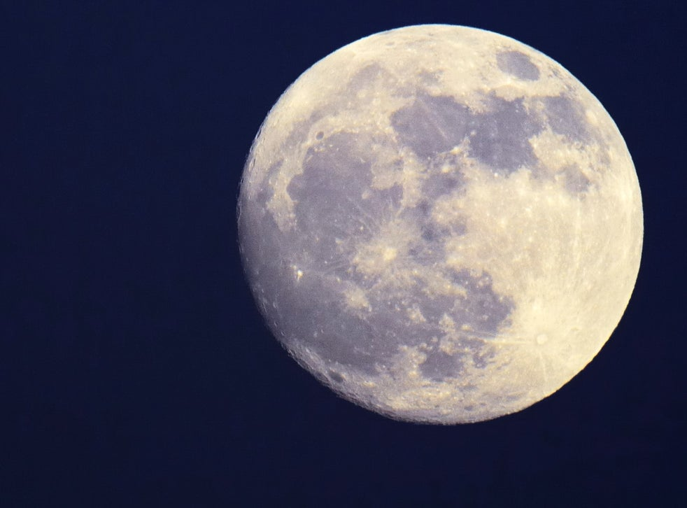 Watch Full Halloween 2020 How to see the Blue Moon tonight | The Independent