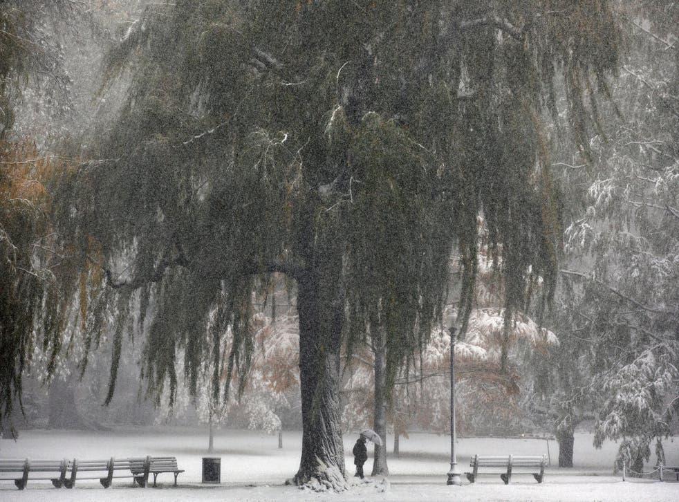 <p>La nevada obstruyó algunas carreteras y causó apagones en el estado de Massachusetts</p>