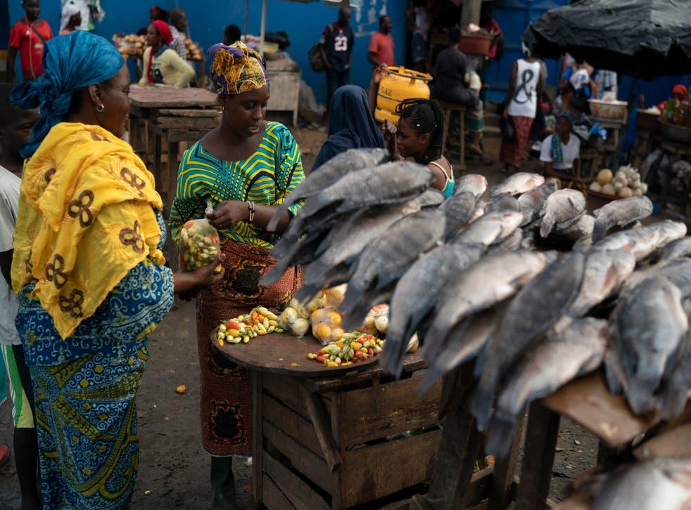 Ivory Coast Elections
