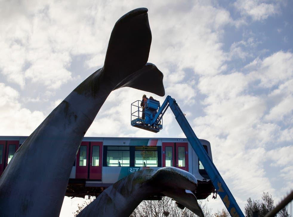 Netherlands Metro Whale