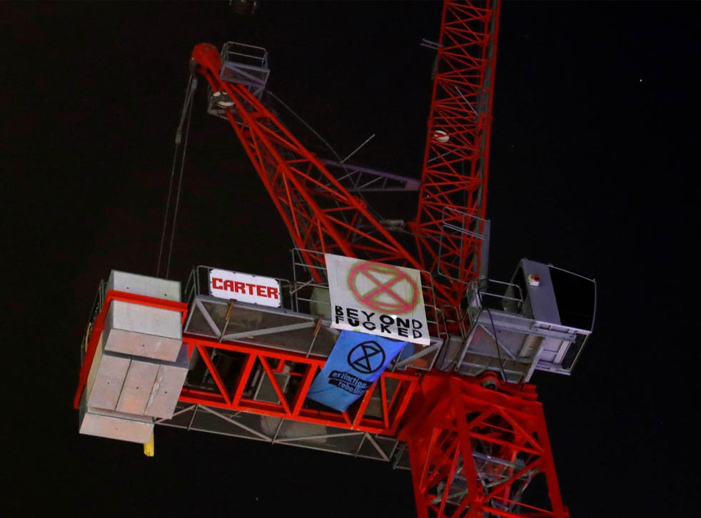 The teenage climate crisis activist from Extinction Rebellion staging the protest at the top of the crane, 7 November