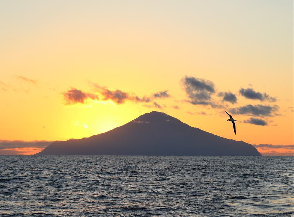 <p>The isolated archipelago of Tristan da Cunha is home to many marine creatures that are globally threatened&nbsp;</p>
