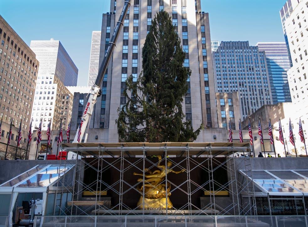 APTOPIX Rockefeller Center Christmas Tree