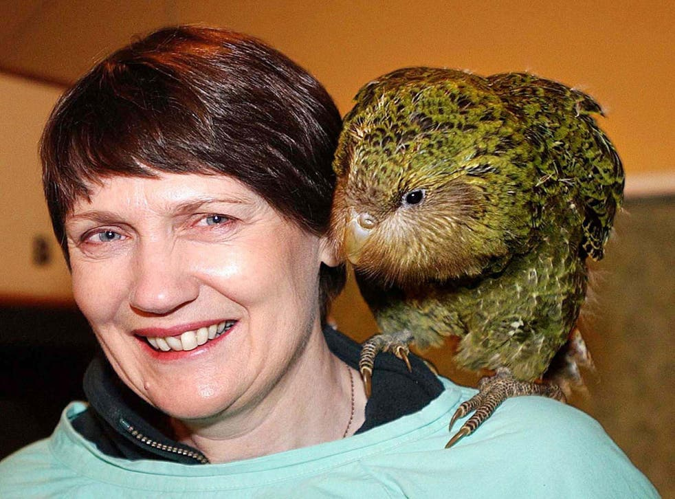 <p>The kakapo – perched on the shoulder of former New Zealand prime minister Helen Clark – becomes the country's Bird of the Year for a second time</p>