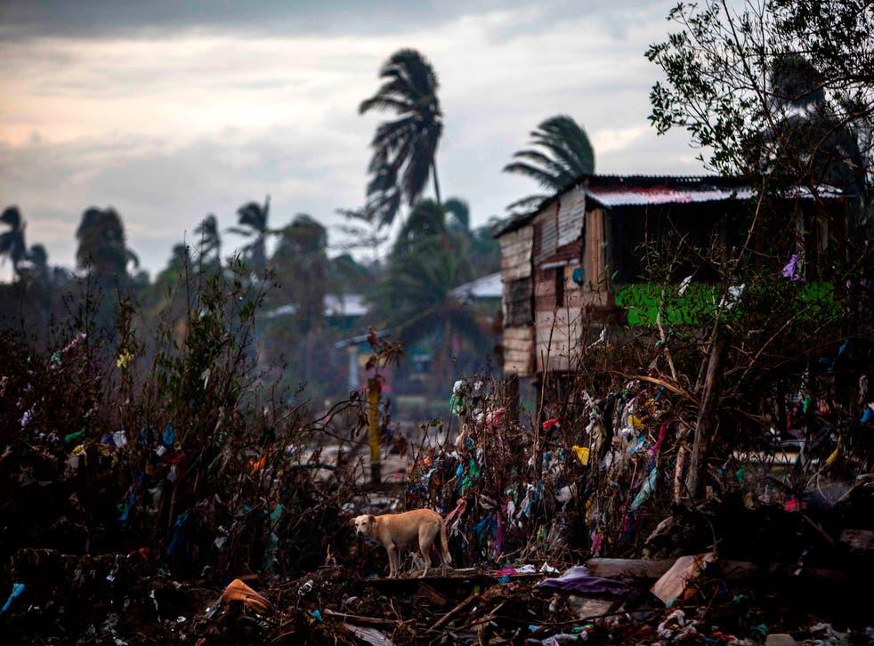 <p>Los estragos del huracán Eta aún son visibles en algunos lugares (Photo by STR/AFP via Getty Images)</p>