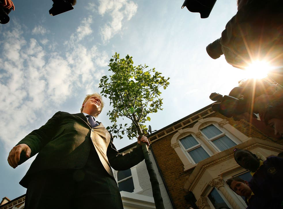 <p>Boris Johnson stands beside a tree he planted in 2008, as part of an initiative during his tenure as London mayor</p>