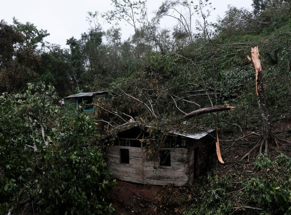 <p>Las ramas de los árboles caídos cubren una casa después del paso del huracán Iota en Siuna, Nicaragua, el martes 17 de noviembre de 2020.</p>