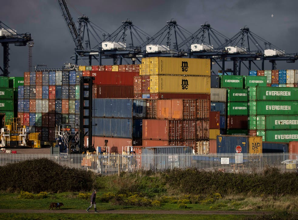 <p>OECD more than doubles forecast for US growth as Biden stimulus expected to boost economy </p>