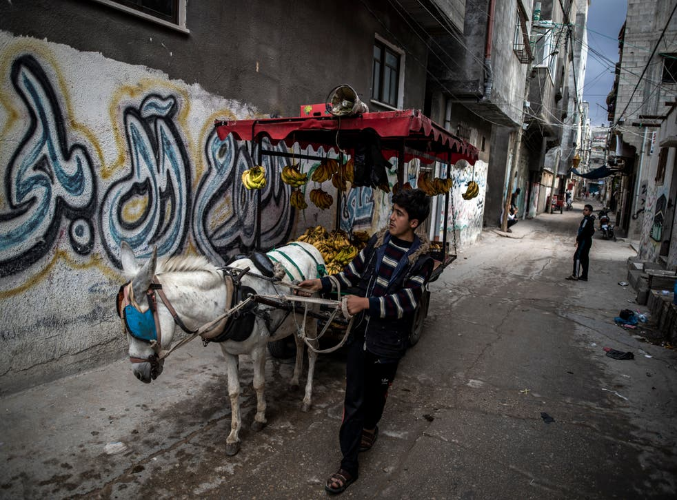 <p>A Palestinian boy sells bananas on a donkey cart in an alley in the Shati refugee camp in Gaza City</p>