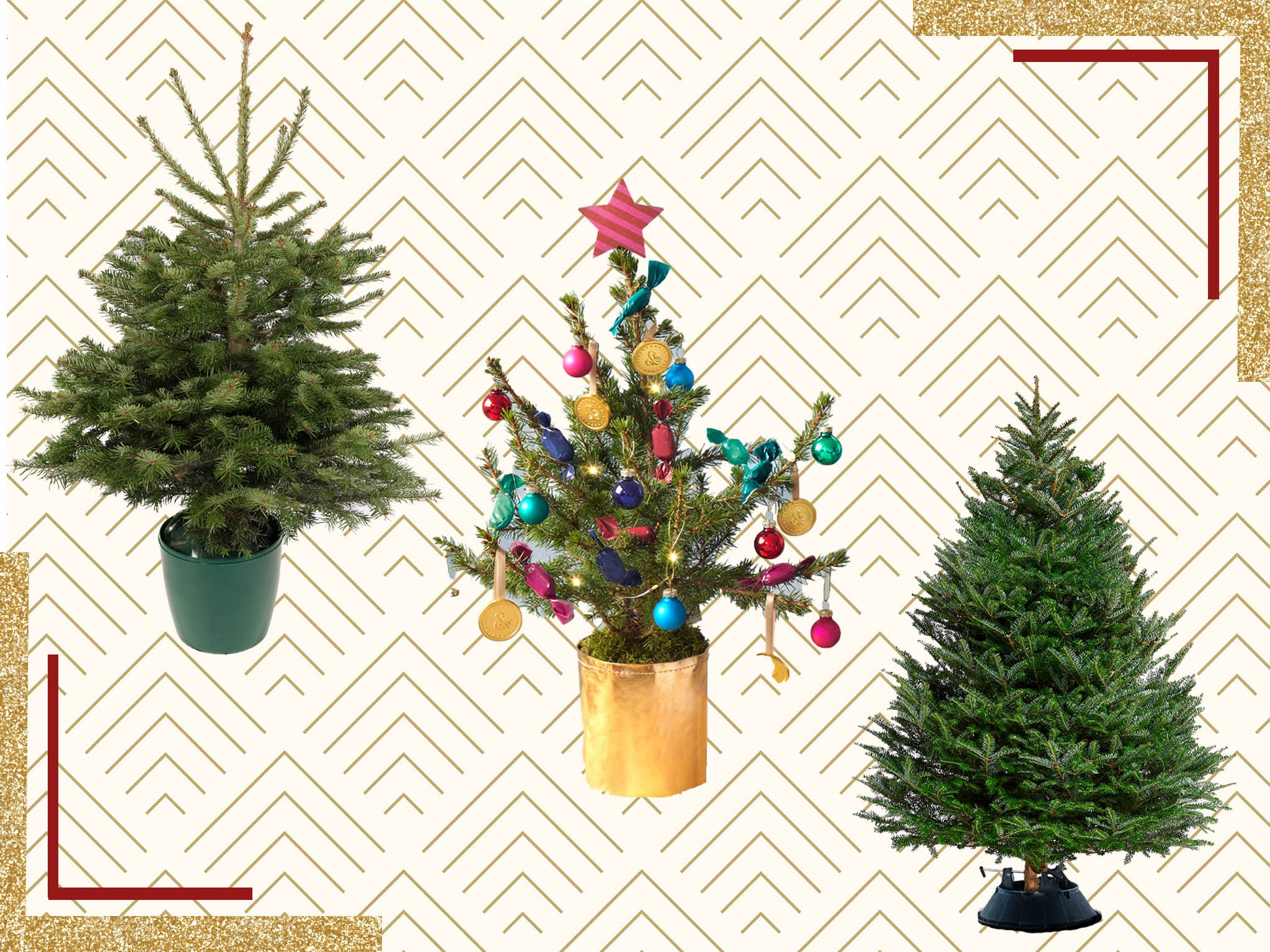 Best Real Christmas Trees 2020 Nordmann Fraser And Korean Firs The Independent
