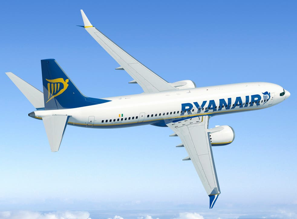 <p>Common sight: Ryanair previously ordered 135 Boeing 737 Max jets</p>