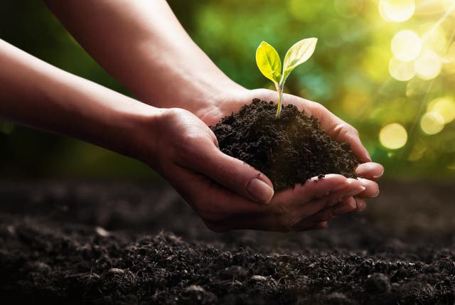 <p>On World Soil Day let's celebrate the remarkable dirt beneath our feet</p>