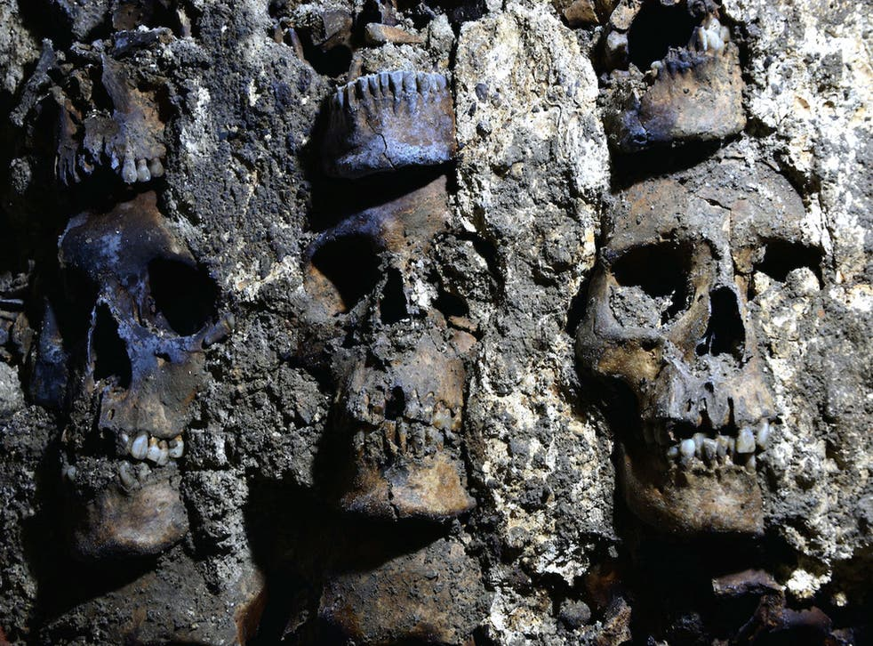 <p>Three skulls are shown in a recently discovered section of the Huei Tzompantli in Mexico City</p>