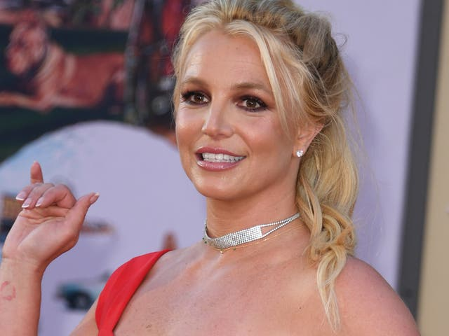 <p>Britney Spears's conservatorship has been widely discussed since a documentary came out about the singer.</p>