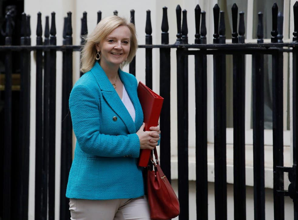 <p>Women and Equalities Minister Liz Truss</p>
