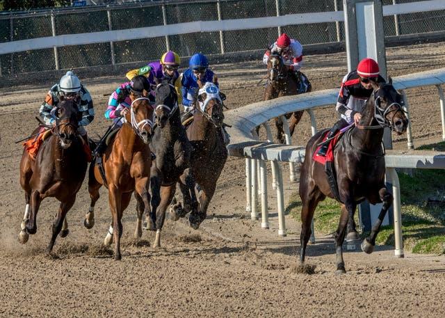 Fair Grounds Horse Racing